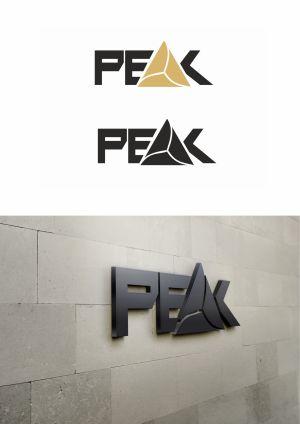Logo Design Peak