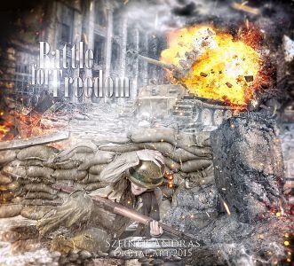 Word War II Picture